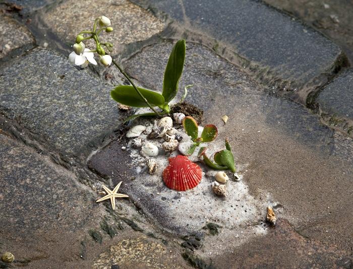 Guerilla Gardening - Designist (3)