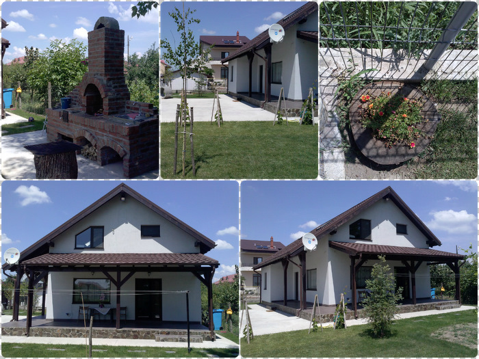 casele cu structura din lemn Honey Wood designist 03