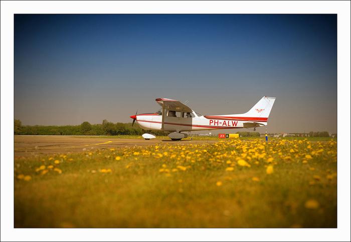Campuri de lalele vazute din avion designist 14