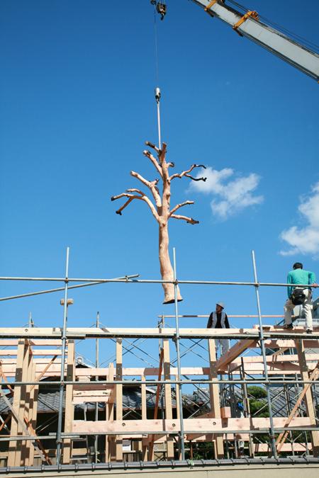 Casa cu copac designist 01
