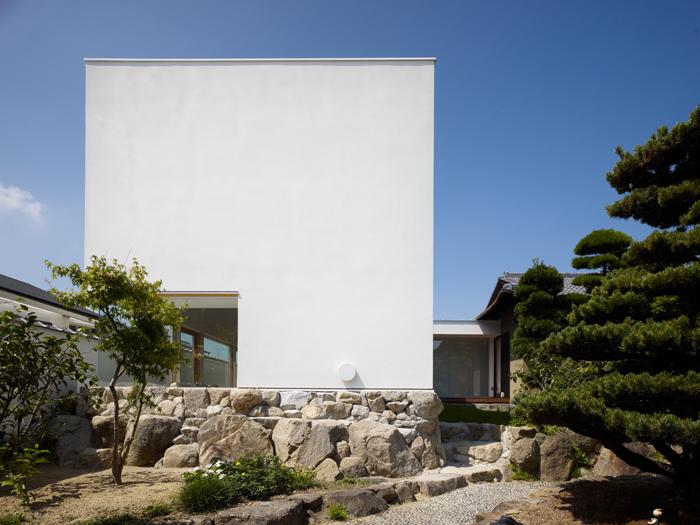 Casa cu copac designist 03
