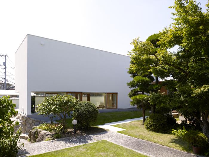 Casa cu copac designist 05