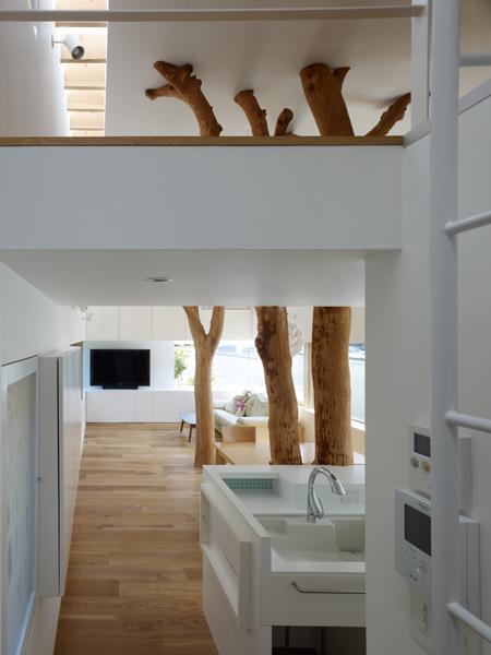 Casa cu copac designist 06