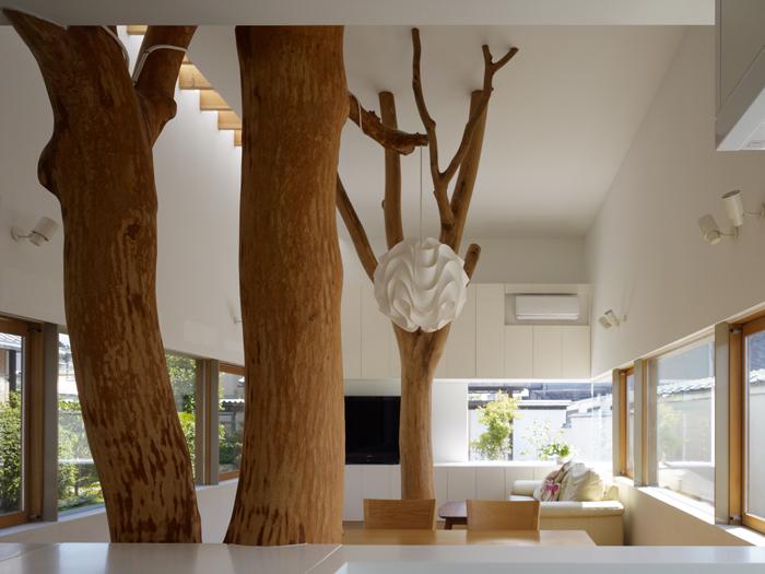 Casa cu copac designist 07