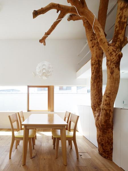 Casa cu copac designist 09