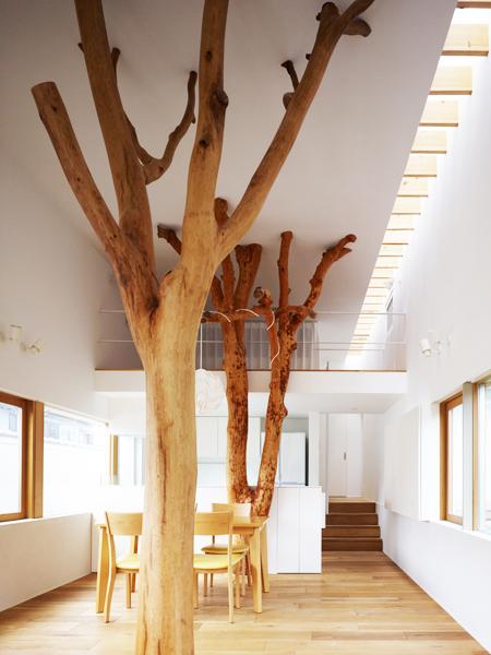 Casa cu copac designist 10