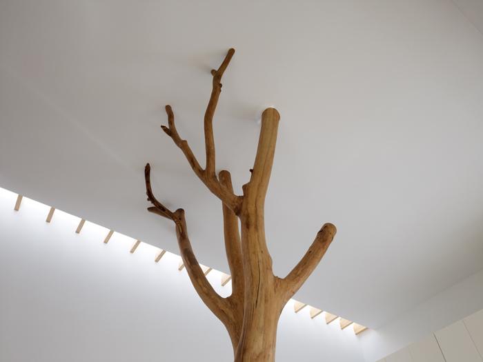 Casa cu copac designist 13