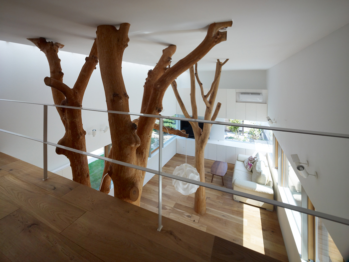 Casa cu copac designist 14