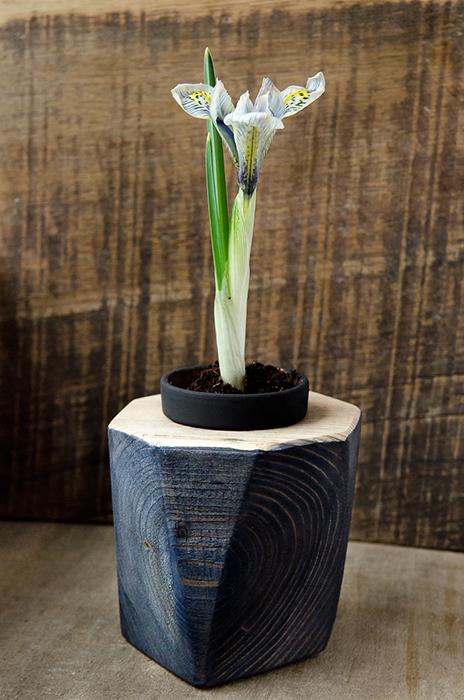 DecoBox - suport floral - Designist (2)