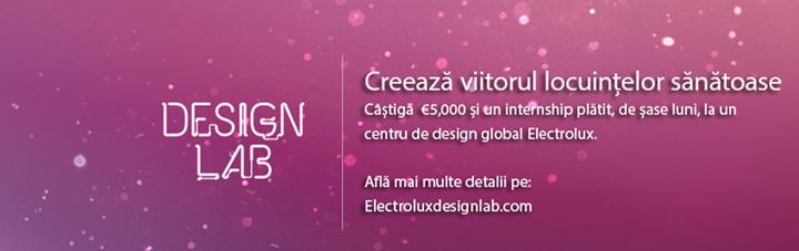Electrolux Design Lab designist 02