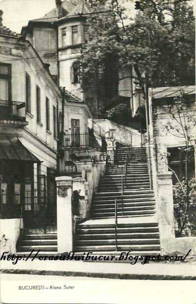 Strada Xenofon - Bucuresti - Designist (2)