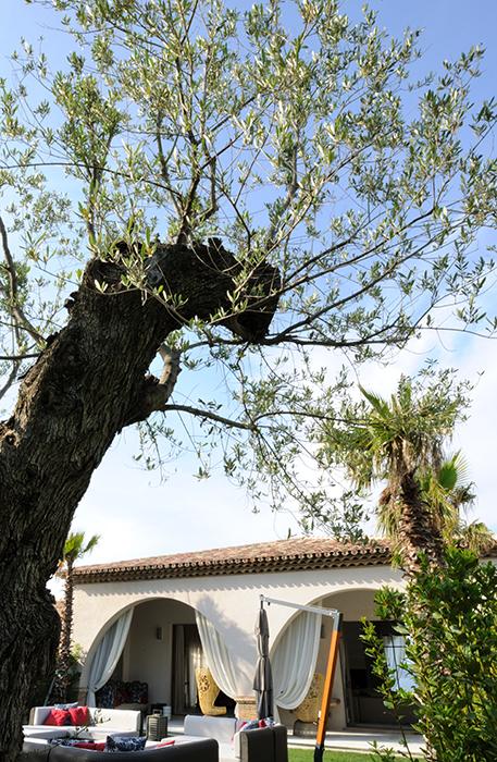 Vila Saint Tropez - Designist (2)