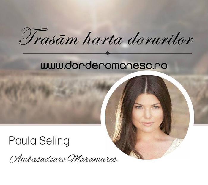 Paula Seling - Designist