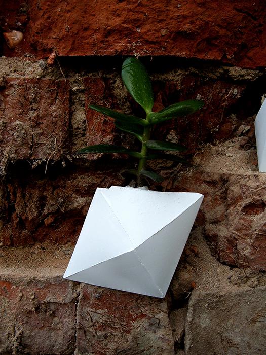 PlastrPlants - event Papillon - Designist (5)