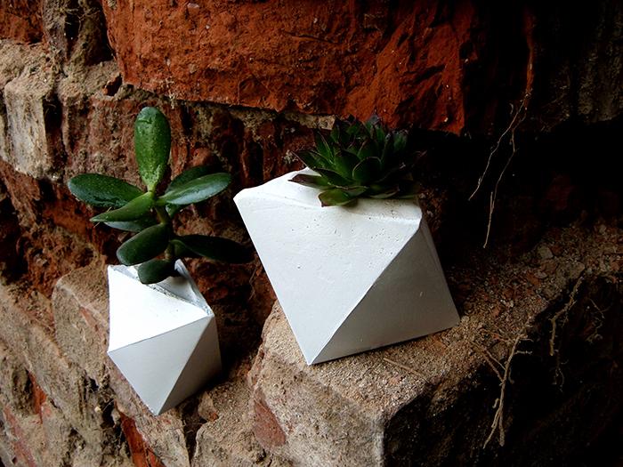 PlastrPlants - event Papillon - Designist (6)
