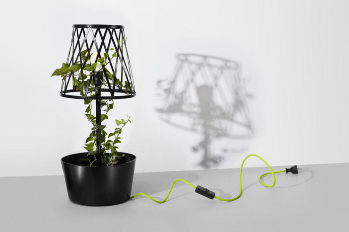 1Greenlamp - design polonez- Designist