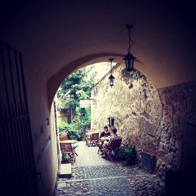 3Pivnita de vinuri - Sibiu - Designist