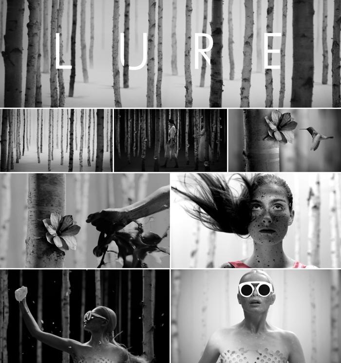 LURE_frames