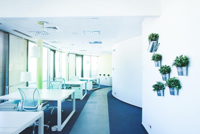 Așa arată biroul unor foști corporatiști, acum freelanceri 07