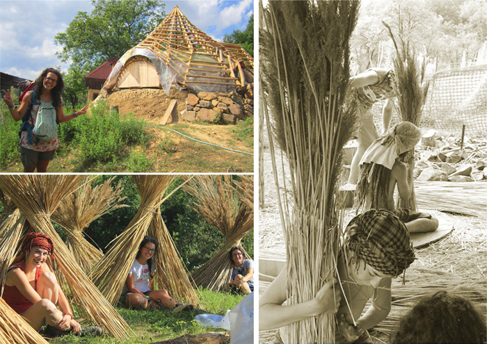 15Baza Ulmu - permacultura - Designist