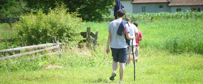 plimbari in Casva