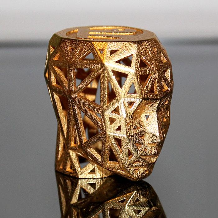 trofeul designerul anului