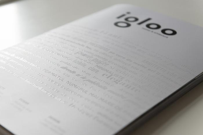 6Noul Igloo - Designist