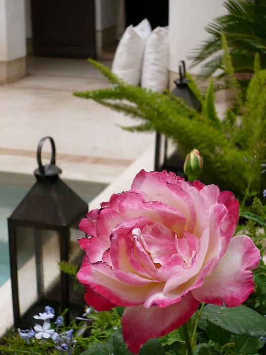 Atelier-Jardins_Marrakech_Designist1
