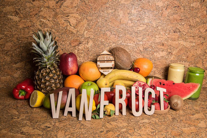 Vanfruct-Mendeleev_Lama_Designist