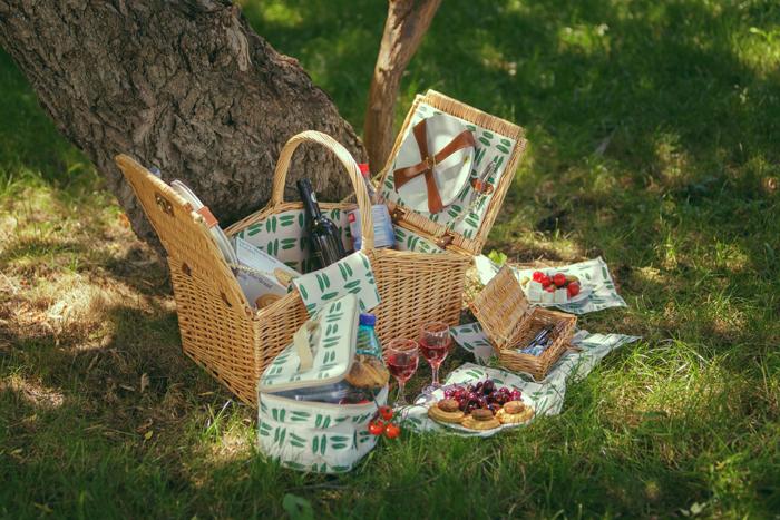 cos picnic 4 persoane Champs de Mars-1